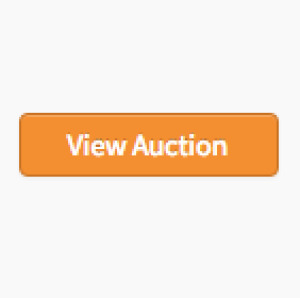 Vintage Collectible Car and Parts Auction