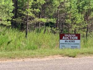 80 Acres Ashland, MS, The Michael S. Brown Estate Online Auction