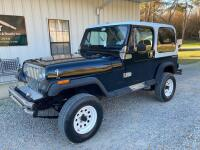 1989 Jeep Wrangler Multipurpose Vehicle (MPV) - 2