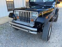 1989 Jeep Wrangler Multipurpose Vehicle (MPV) - 3
