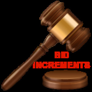 BID INCREMENTS