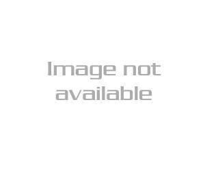 Mossberg 377 Plinkster (PARTS ONLY)